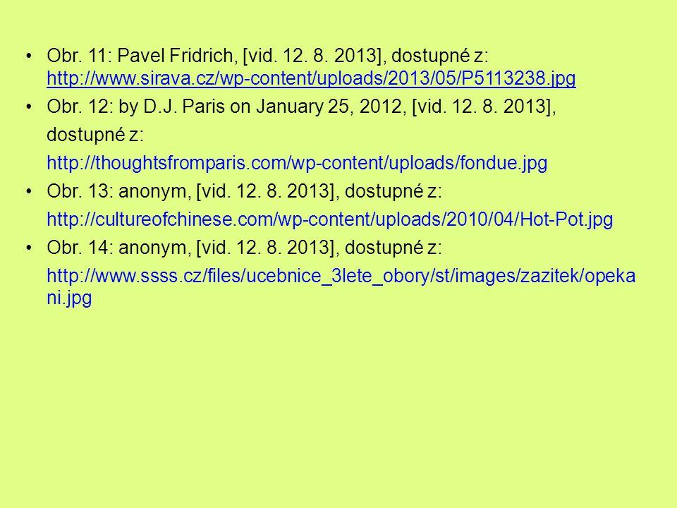 Obr. 11: Pavel Fridrich, [vid. 12. 8. 2013], dostupné z: http://www